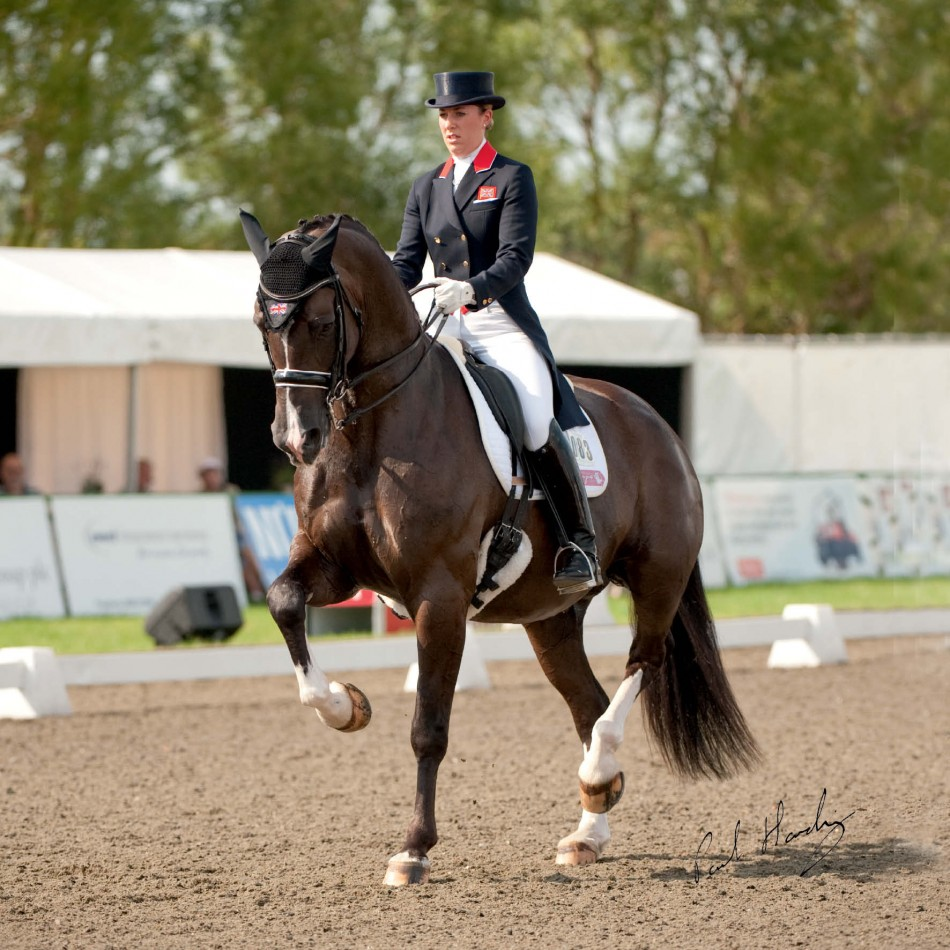 Rachael Downs Dressage