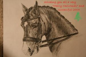 dressage_horse_head 1